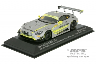 Mercedes AMG GT3 - Edoardo Mortara  # 48<br />FIA GT World Cup Champion 2017 - GP Macau<br />1:43 - Minichamps 447173098